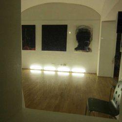 Bilder. Grüne Galerie 2013.